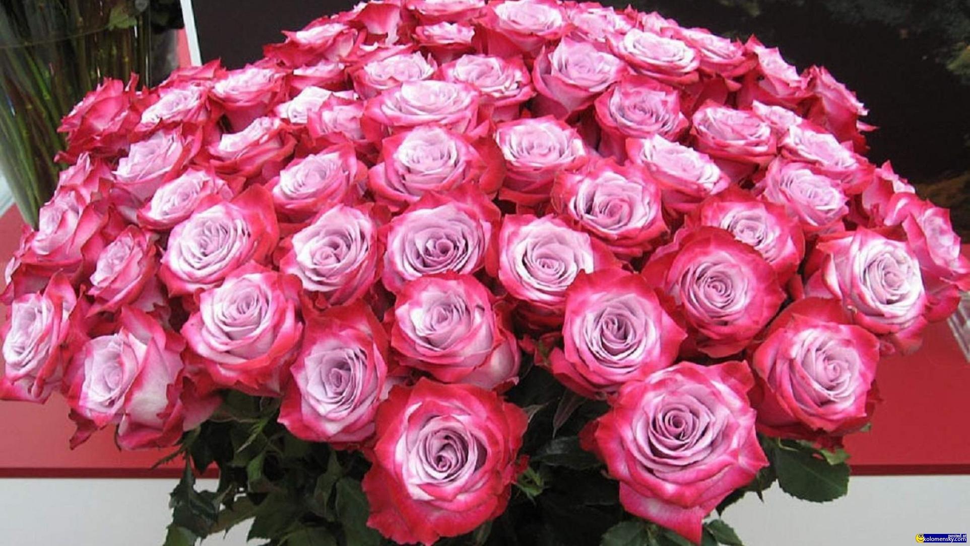 Бесплатная доставка цветов по России и всему миру купить